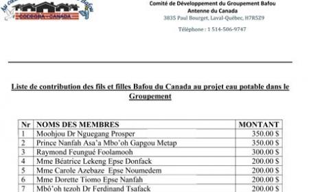 CODEGBA : Liste des contributions des fils et filles Bafou du Canada au projet eau potable dans le Groupement Bafou